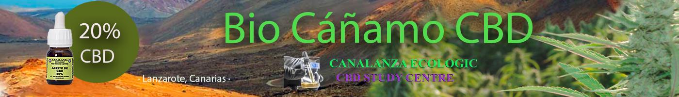 CBD Canarias, timanfaya, Lanzarote,